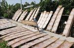 Làng nghề bánh tráng hối hả sản xuất cung ứng cho Tết