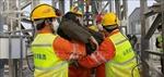 Trung Quốc giải cứu thêm 10 người trong vụ sập mỏ vàng tại Sơn Đông