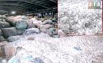 Thái Bình: Xử phạt hơn 350 triệu đồng công ty chây ì khắc phục sai phạm