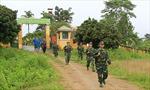 Tăng cường phối hợp, tuần tra và bảo vệ rừng tại khu vực biên giới