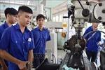 Mới có 14 đơn vị đăng ký đào tại lại, nâng cao kỹ năng nghề cho lao động