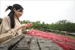 Đưa nông sản Việt đến thị trường thế giới - Bài 2: Giữ vững và phát triển nông sản được bảo hộ