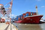 Cảng Tân Cảng - Cái Mép Thị Vải đón chuyến tàu đầu tiên của China United Line