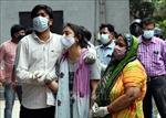 Thế giới đã ghi nhận trên 160,5 triệu ca nhiễm virus SARS-CoV-2