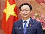 Tư tưởng Hồ Chí Minh bao trùm trong xây dựng và hoàn thiện Nhà nước pháp quyền