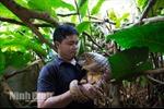 Nhà bảo tồn người Việt đoạt giải thưởng môi trường danh giá nhất thế giới