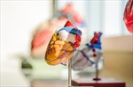 Australia chế tạo trái tim nhân tạo đầu tiên trên thế giới