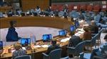 HĐBA thảo luận về tác động của đại dịch COVID-19 đến nỗ lực chống khủng bố