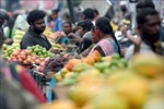 IMF cảnh báo tăng trưởng kinh tế chênh lệch giữa các nhóm nước