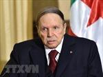 Cựu Tổng thống Algeria Abdelaziz Bouteflika qua đời