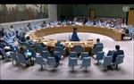 HĐBA thông qua hai nghị quyết về Afghanistan và Iraq