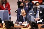 Giới chuyên gia, học giả Séc đánh giá cao phát biểu của Chủ tịch nước Việt Nam tại LHQ