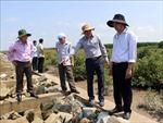 Khắc phục sạt lở bờ biển Cà Mau do biến đổi khí hậu