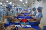 Khắc phục 'thẻ vàng' IUU: Phát triển nghề cá theo thông lệ quốc tế