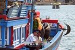 Ngư dân rốt ráo gỡ 'thẻ vàng' IUU