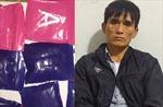 Liên tiếp triệt xóa 2 đường dây ma túy số lượng lớn từ Lào về Việt Nam