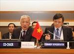 Việt Nam kêu gọi cộng đồng quốc tế chung tay khắc phục hậu quả chiến tranh