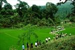 Công nhận xã An toàn khu, vùng An toàn khu thuộc tỉnh Thái Nguyên