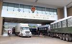 Việt Nam - Trung Quốc thúc đẩy thương mại nông sản