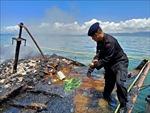 Tàu chở khách bốc cháy ngoài khơi Indonesia khiến 7 người chết và 4 người mất tích
