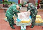 Bắt giữ 450 kg nầm lợn nhập lậu tại biên giới Lạng Sơn