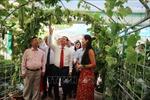 Công nhận thành phố Hà Tĩnh hoàn thành nhiệm vụ xây dựng nông thôn mới