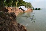 Báo động tình trạng sạt lở bờ sông Tiền