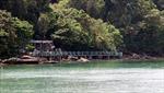 'Phù phép' đất rừng Vườn quốc gia Phú Quốc - Bài 1: Nghi vấn lập khống nguồn gốc đất