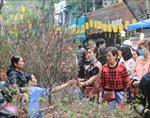 Nhộn nhịp chợ hoa Hàng Lược ngày 29 Tết
