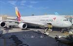 Các hãng hàng không cắt giảm chi phí trước cảnh báo về COVID-19