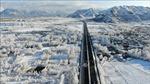 Tây Tạng trải qua mùa đông lạnh nhất trong 20 năm