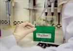 Thừa Thiên - Huế: Xét nghiệm sàng lọc SARS-CoV-2 cho sinh viên ngoại tỉnh sau kỳ nghỉ Tết