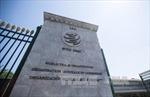 Các ứng cử viên bước vào cuộc đua cho vị trí Tổng Giám đốc WTO