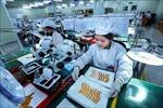 Giới chuyên gia đánh giá triển vọng khôi phục tăng trưởng kinh tế của Việt Nam