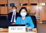 Hội đồng Nhân quyền LHQ thảo luận về quyền của người khuyết tật trong bối cảnh biến đổi khí hậu