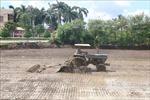 Nhiều địa phương hoàn thành nhiệm vụ xây dựng nông thôn mới