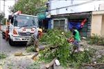 Ban Chỉ đạo Trung ương về Phòng chống thiên tai làm việc tại Quảng Ngãi