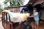 Bàn phương án hỗ trợ người dân Quảng Trị tái sản xuất sau lũ lụt