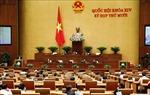 Quốc hội thảo luận trực tuyến về phòng chống tội phạm, tham nhũng