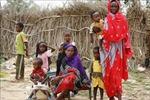 Hội thảo quốc tế về giảm đói nghèo toàn cầu