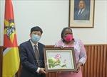 Mozambique ca ngợi Việt Nam trên vai trò Chủ tịch ASEAN và Ủy viên không thường trực HĐBA LHQ