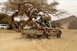 Tấn công ở miền Tây Niger, nhiều dân thường thiệt mạng