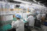 Bắc Giang khởi động lại các hoạt động sản xuất, kinh doanh trong tình hình mới