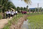 Xã đảo Hòa Minh vươn tới nông thôn mới nâng cao