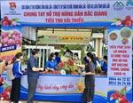 Đắk Lắk hỗ trợ tiêu thụ vải thiều Bắc Giang
