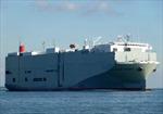 Tàu có 2 thủy thủ dương tính với SARS-CoV-2 đã rời Hải Phòng về Philippines