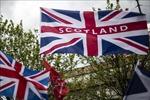 Chính phủ Anh không ngăn cản Scotland tổ chức trưng cầu ý dân về độc lập