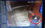 Cục Trẻ em đề nghị xử lý nghiêm vụ dâm ô trẻ em trong thang máy tại TP Hồ Chí Minh