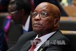 Cựu Tổng thống Nam Phi J.Zuma ra tòa lần thứ 4