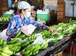 Giá trị xuất khẩu rau quả từ đầu năm 2020 đạt gần 2 tỷ USD